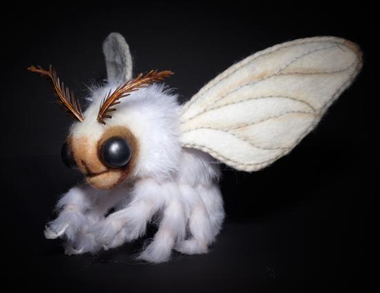 JohnE moth